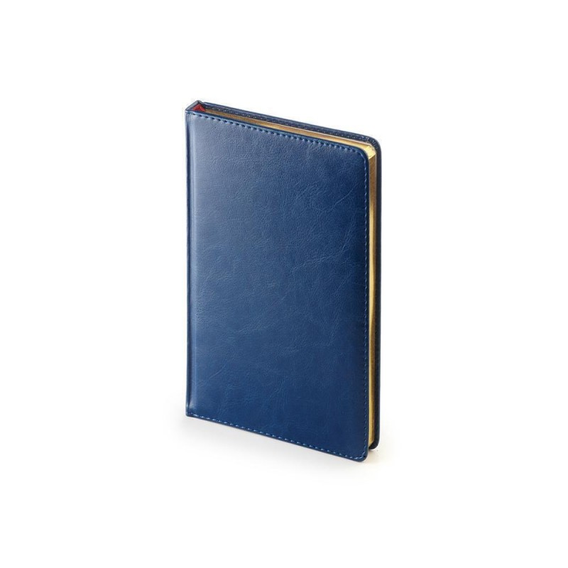 Ежедневник недатированный А4 «Sidney Nebraska» синий