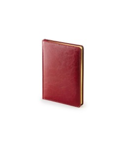 Ежедневник А5 датированный «Sidney Nebraska» 2020 бордовый